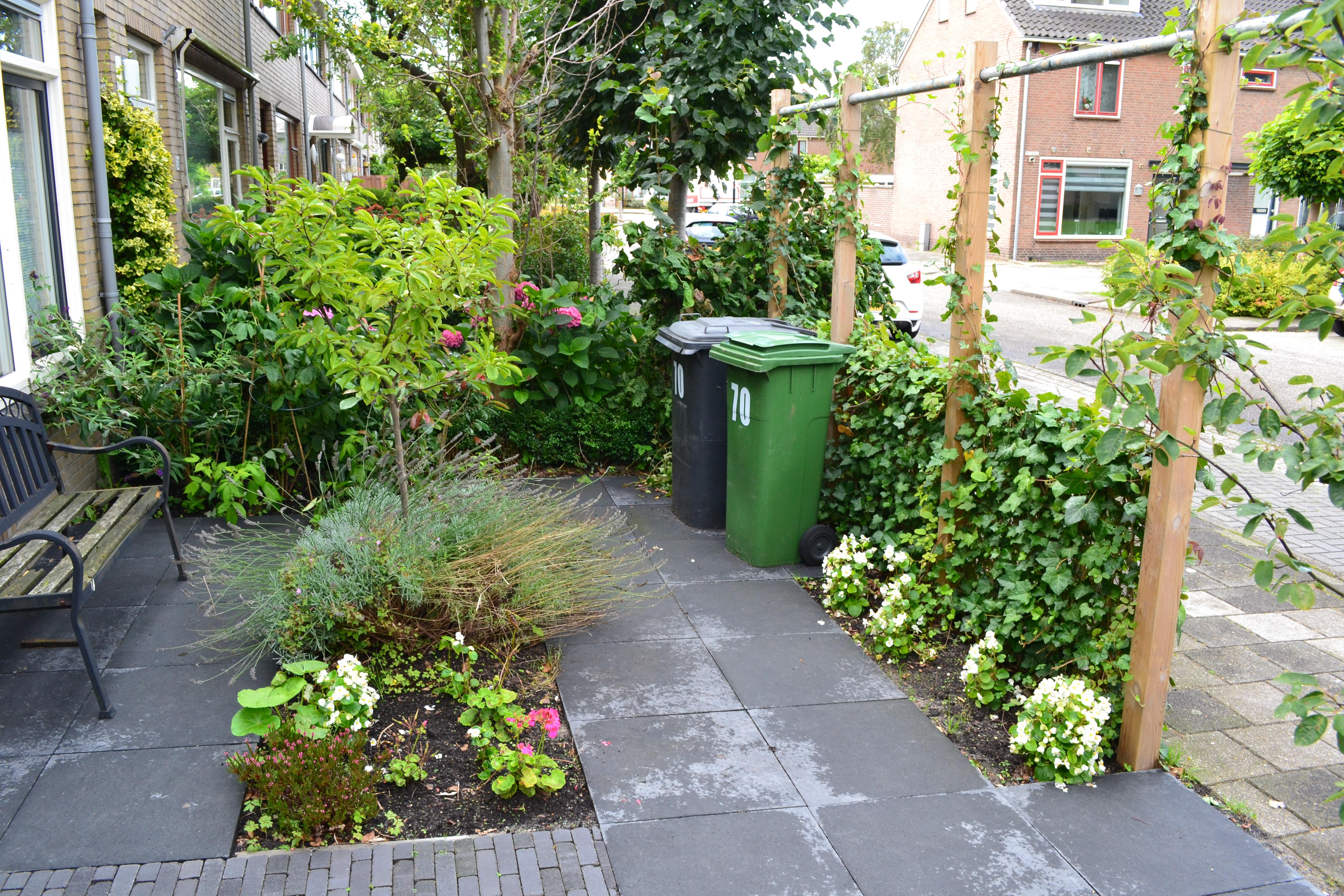 Kleine tuin met vijver for Klein tuin uitleg