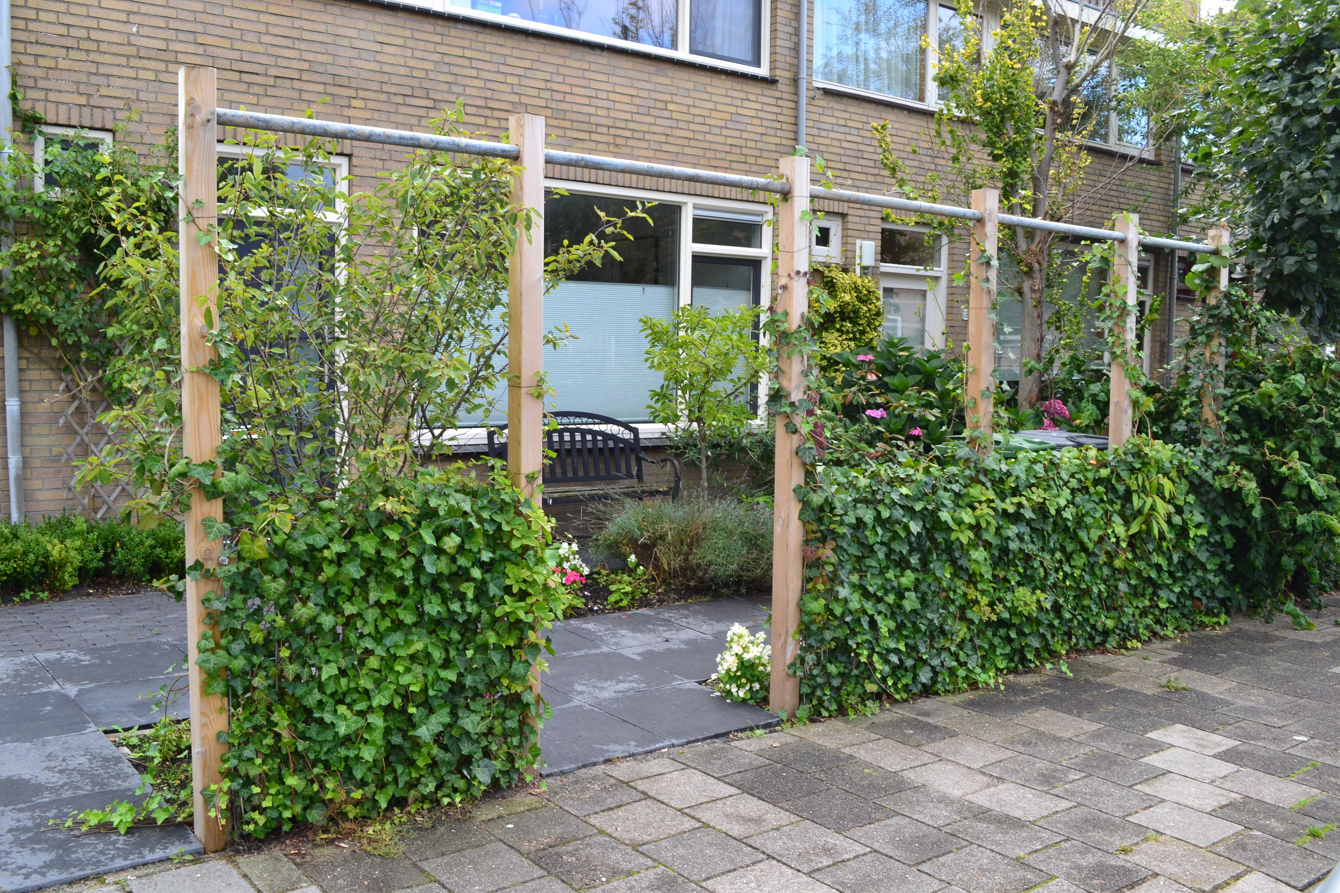Projecten - Wisse tuinen