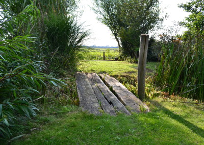 Tuin en landschap