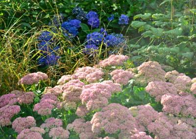 natuurlijke bloemen