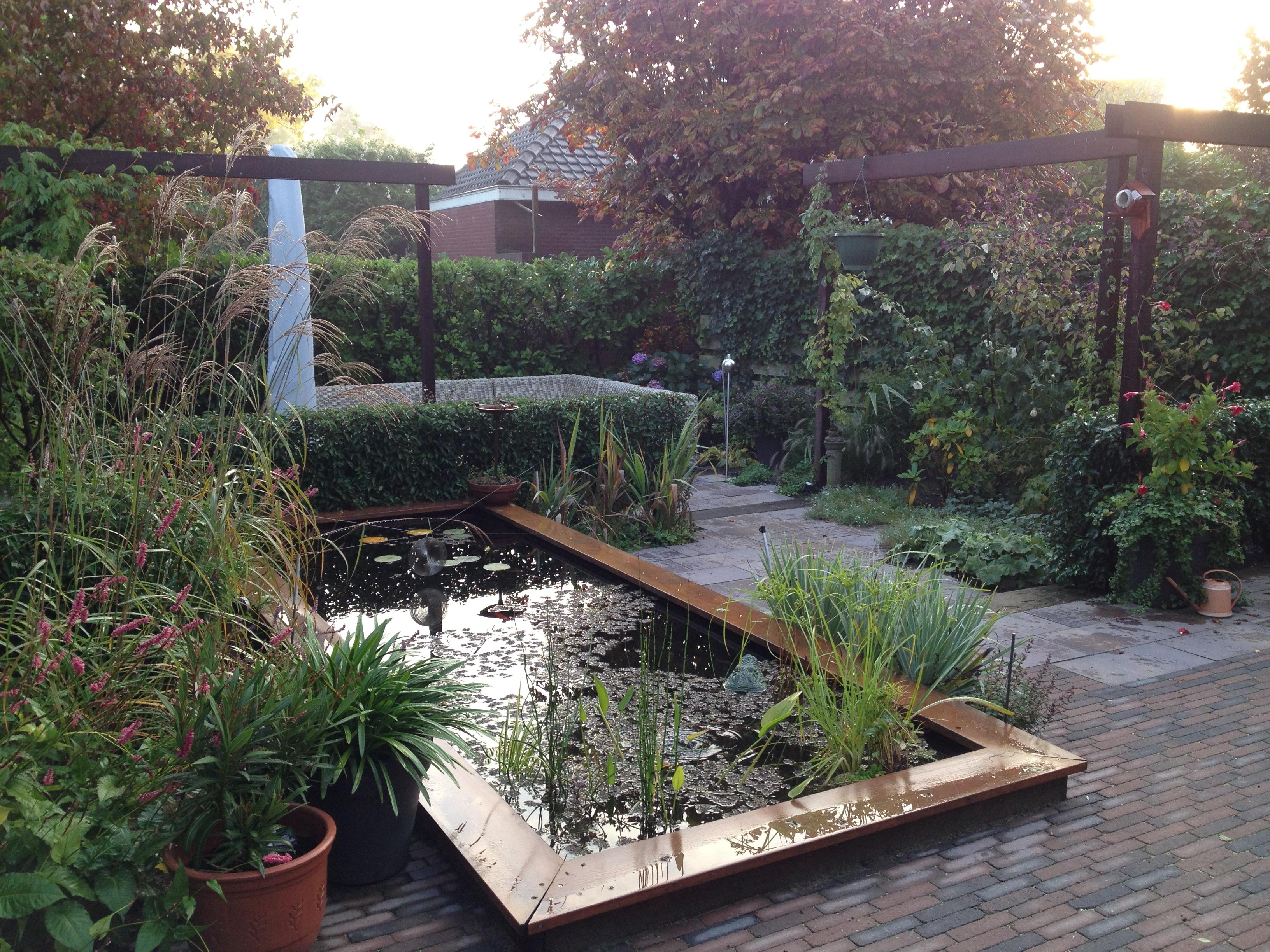 Vijvers wisse tuinen for Vijver voor kleine tuin